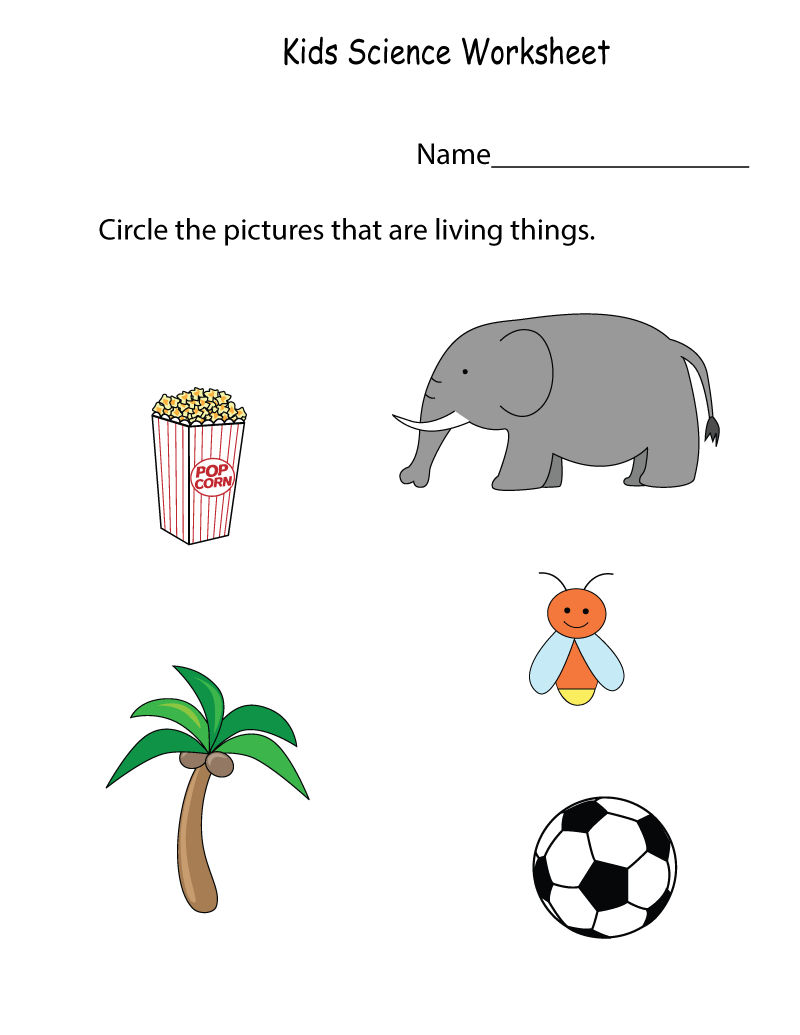 Science Worksheets Children
