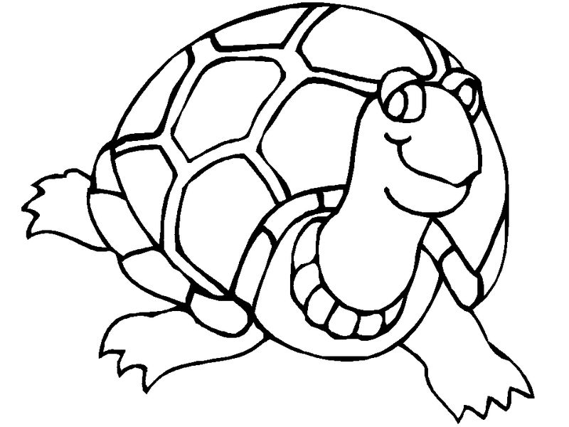 Sea Turtle Coloring Page 1