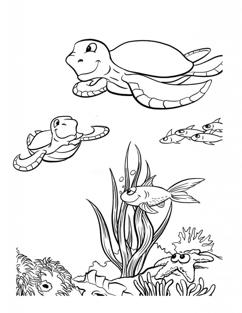 Sea Turtle Coloring Pages Printable