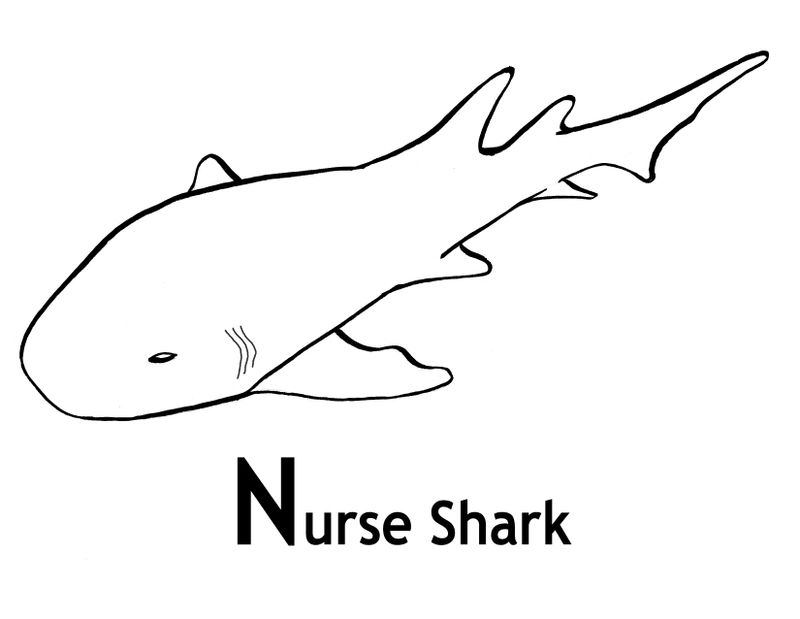 Shark Color Pages Kindergarten 001