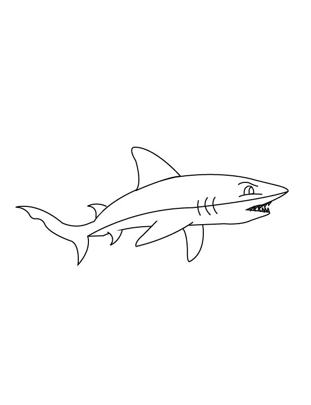 Sharks Coloring Pages To Print