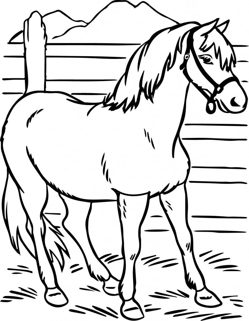 Simple Horse Coloring Page To Print