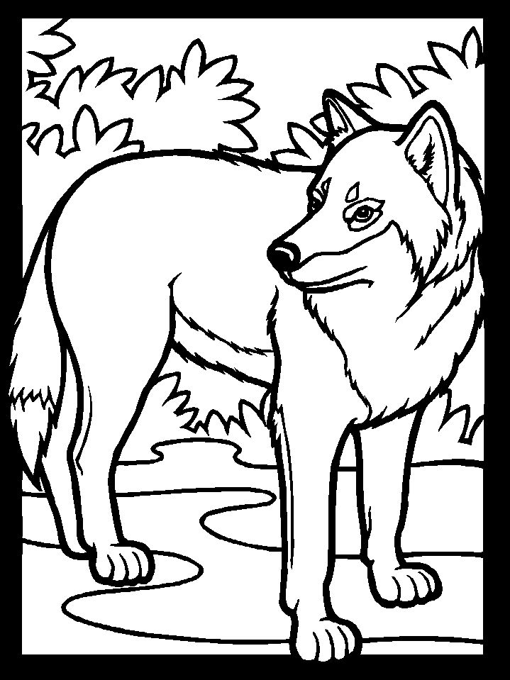 Simple Wolf Coloring Pages 1