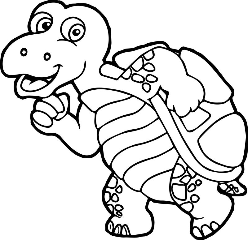 Slow Run Tortoise Turtle Coloring Page