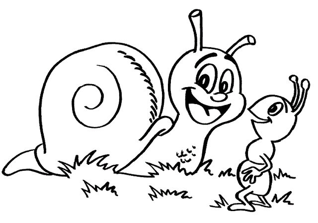 Snail And Ant Coloring Pages