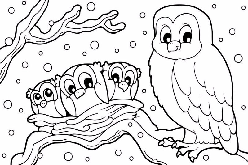 Snowy Owl In Winter Coloring Pages