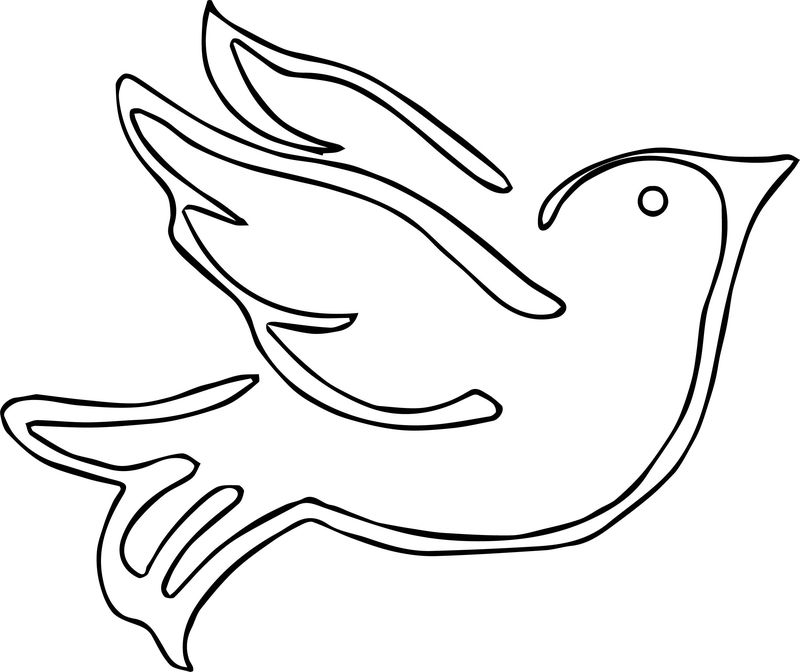 Some Bird Coloring Page