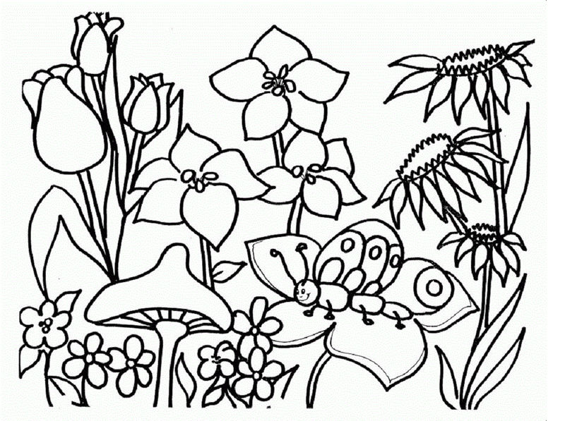 Spring Coloring Pictures Flower
