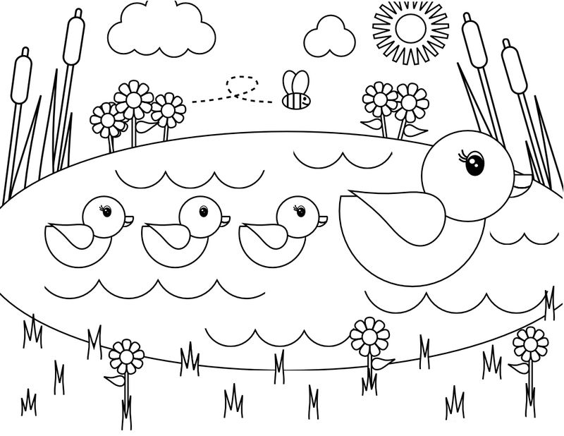 Spring Ducks In Pond Coloring Page