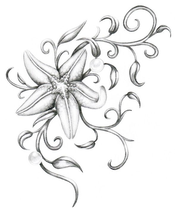Starfish With Curled Weeds Coloring Pages