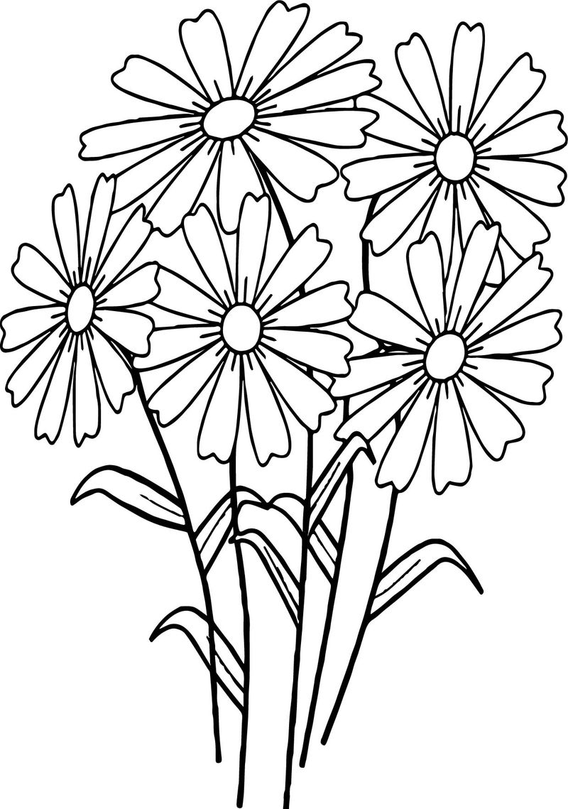 Stemmed Flowers Coloring Page