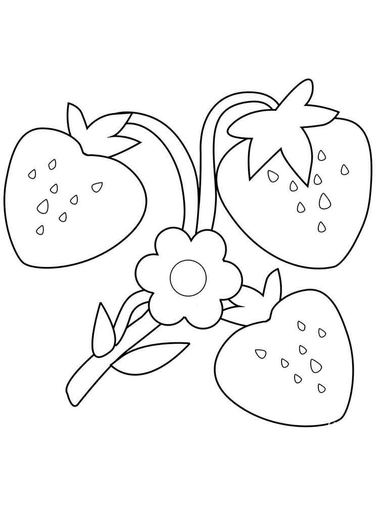 Strawberry Flower Coloring Pages 001