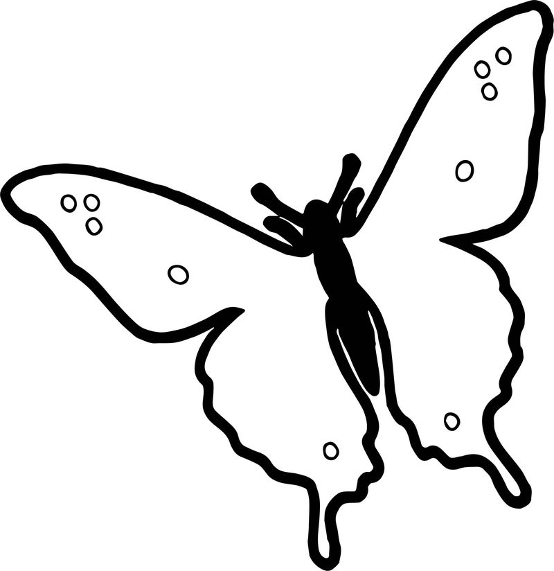 Summer Butterfly Coloring Page