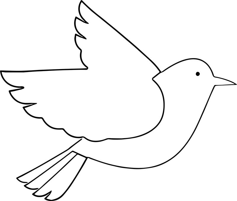 To Bird Coloring Page