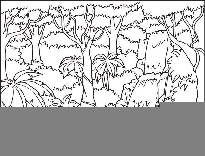 Top Waterfall In The Jungle Coloring Sheet