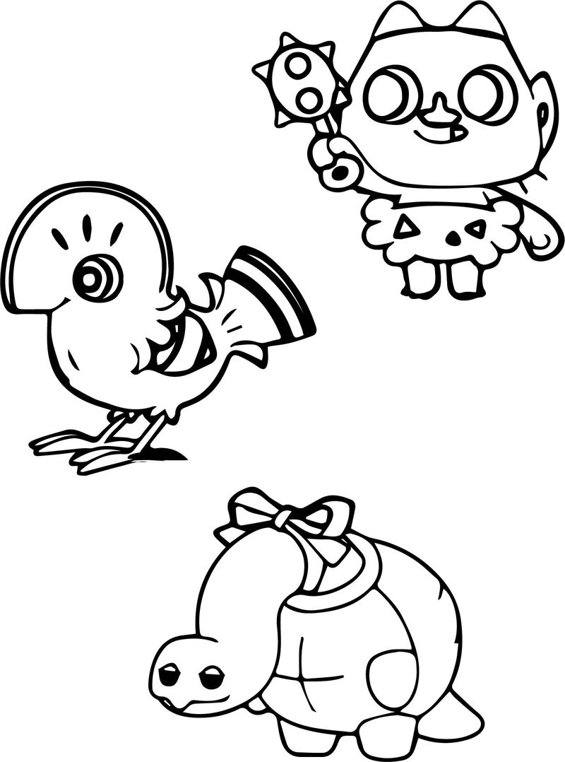 Tortoise Turtle And Other Animal Coloring Page