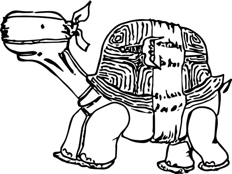 Tortoise Turtle Dont See Coloring Page