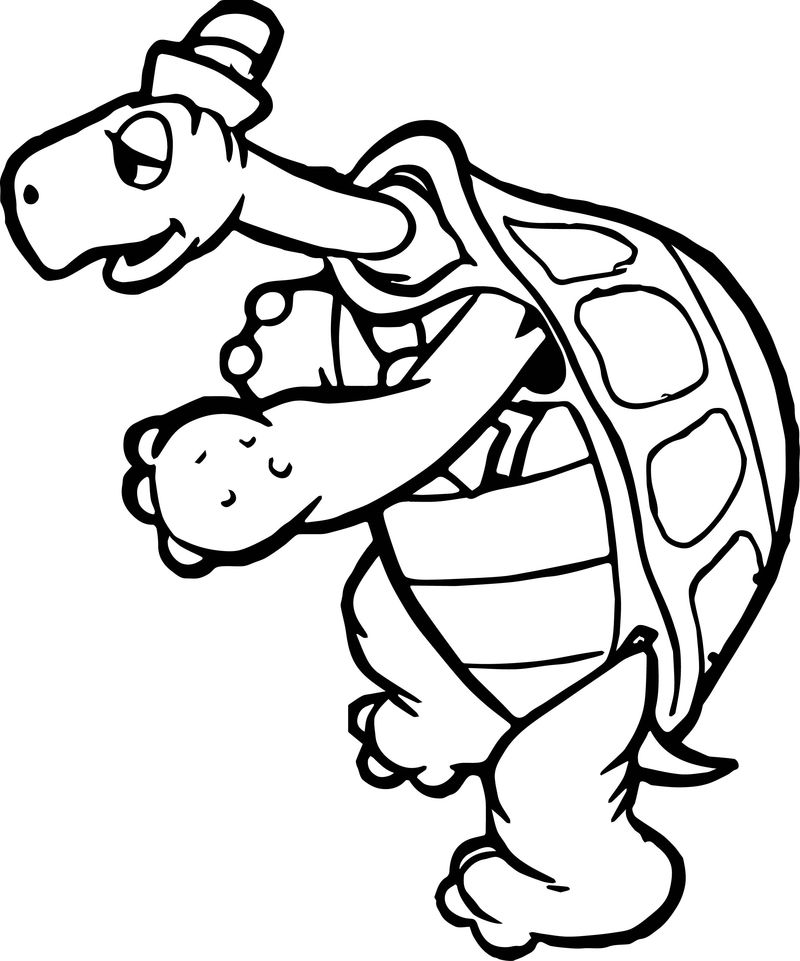 Tortoise Turtle Slow Walk Coloring Page