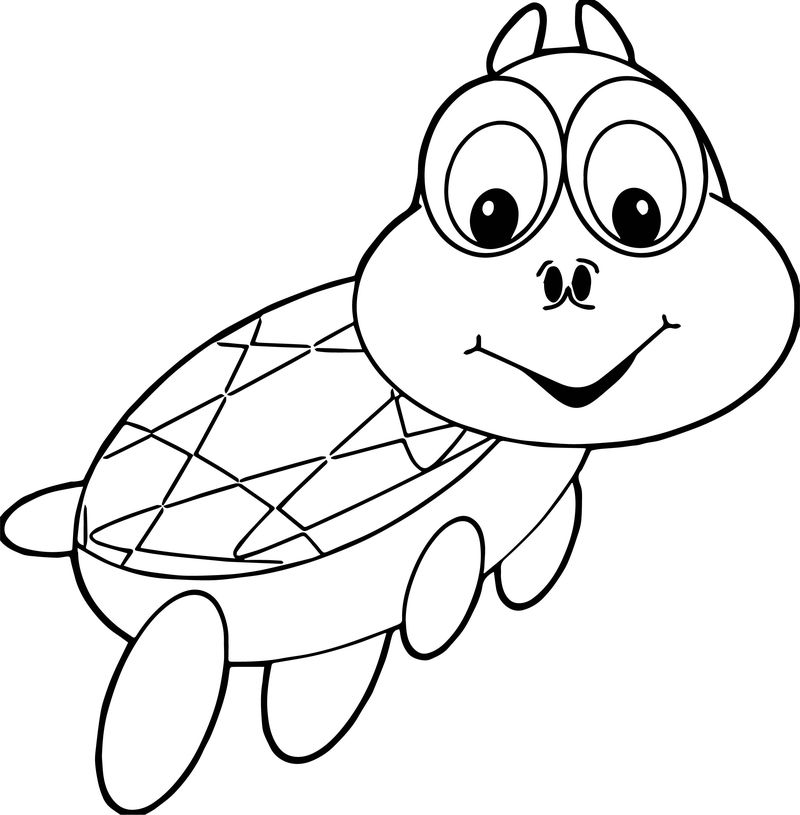 Tortoise Turtle Swim Coloring Page