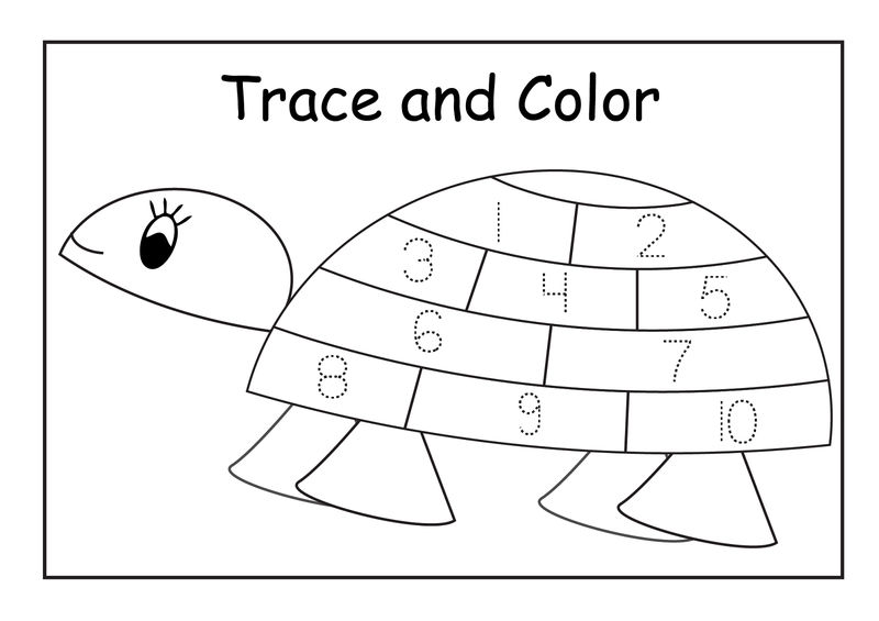 Tracing Numbers 1 5 Turtle