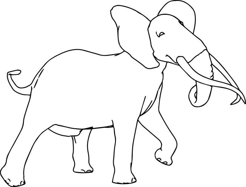 Walking Elephant Coloring Page