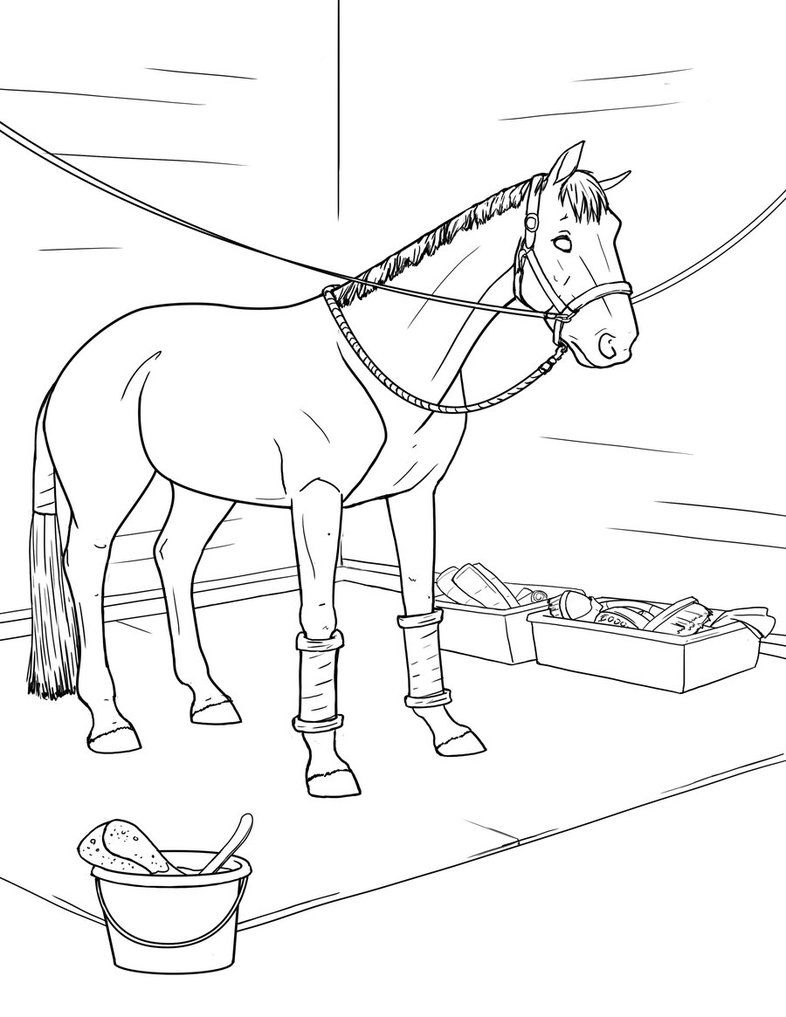 Washing Horse Coloring Pages