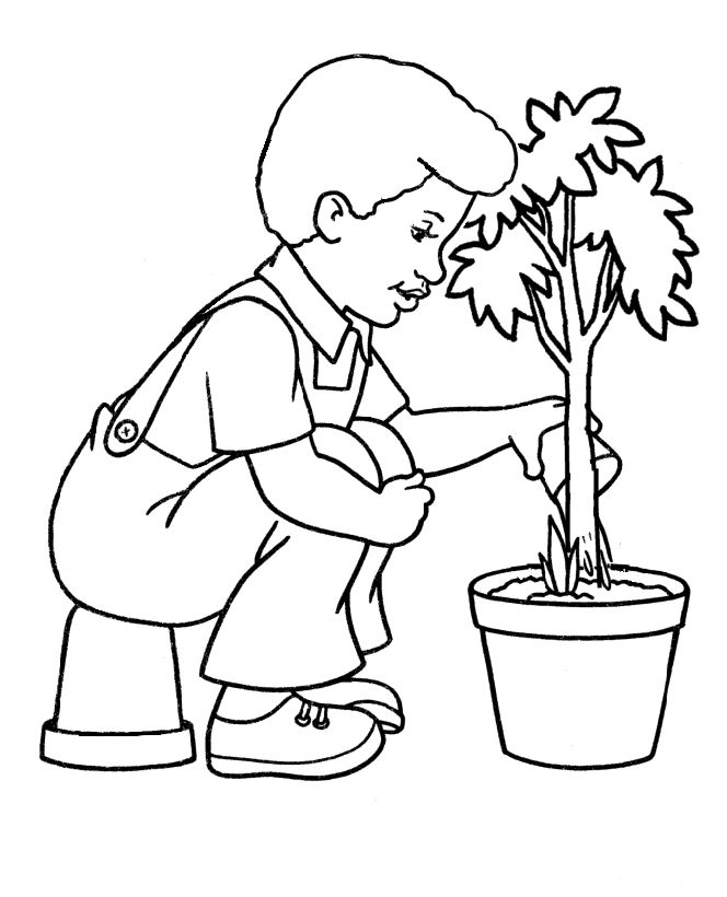 Water Tree Coloring Page