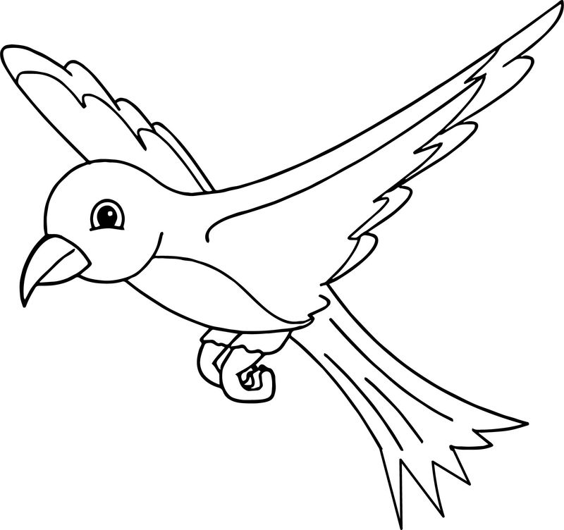 We Bird Coloring Page