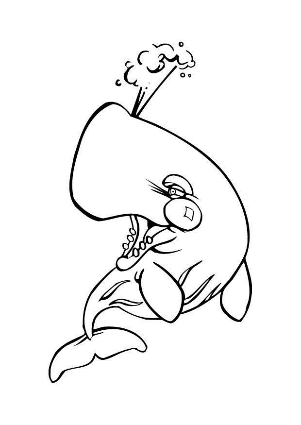 Whale Shark Coloring Pages1