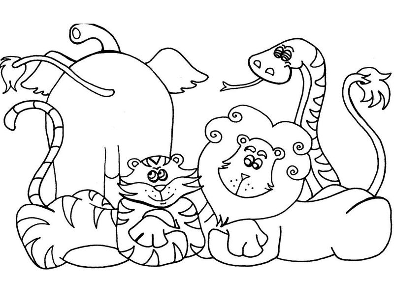 Wild Zoo Animals Coloring Pages