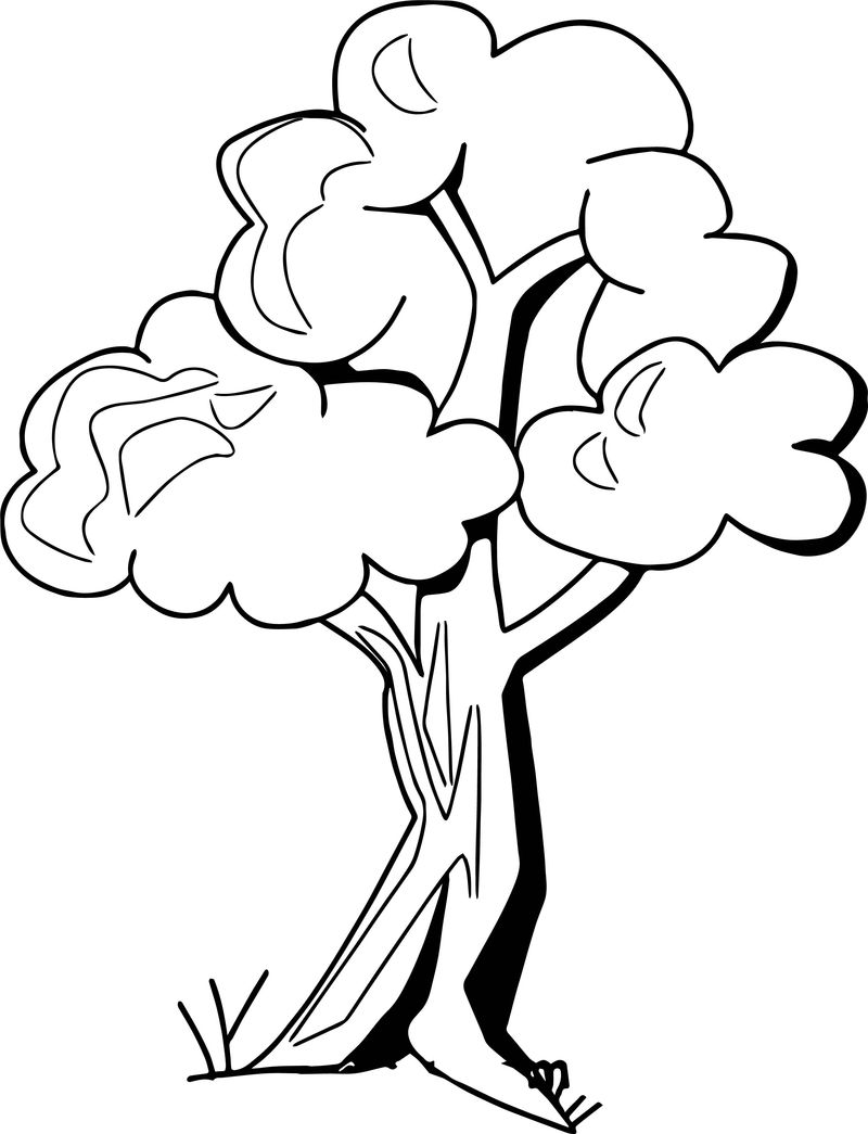 Zany Apple Tree Coloring Page