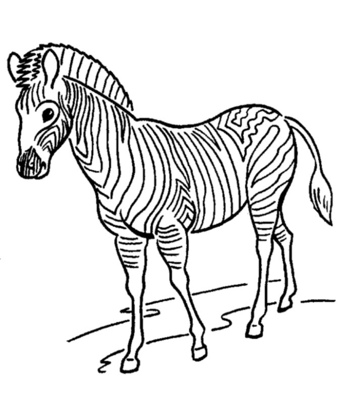 Zebra Zoo Animals Coloring Pages